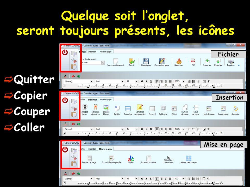 Quelque soit l'onglet, seront toujours présents, les icônes Fichier Insertion Mise en page  Quitter  Copier  Couper  Coller
