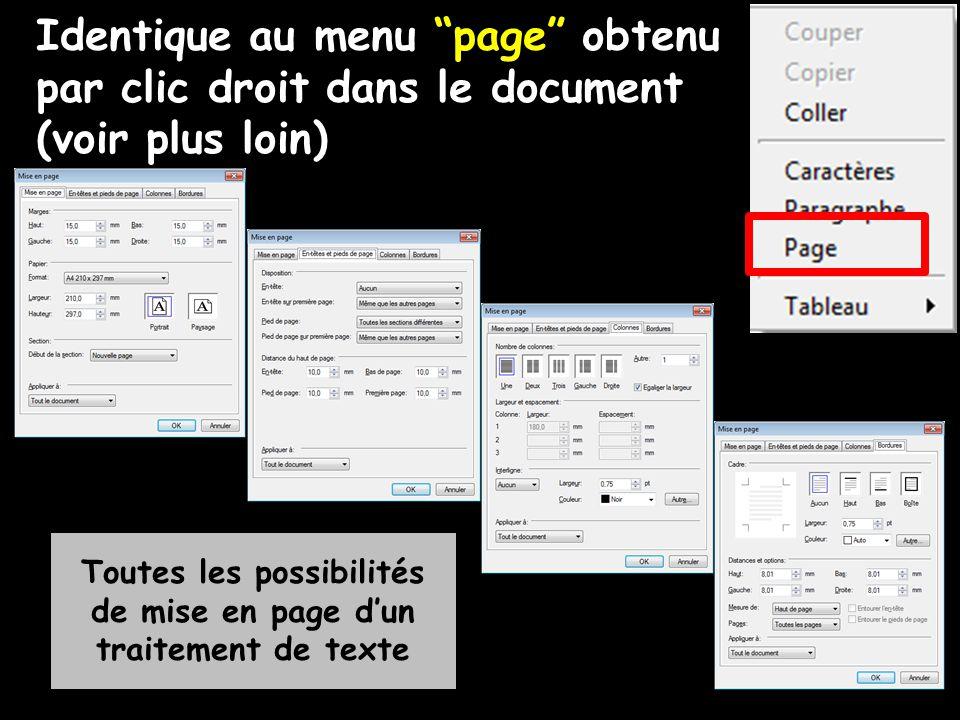 """Identique au menu """"page"""" obtenu par clic droit dans le document (voir plus loin) Toutes les possibilités de mise en page d'un traitement de texte"""