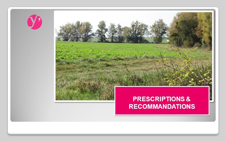 PRESCRIPTIONS DE L ARRÊTÉ Arrêté préfectoral n°AD2008-306 du 23/12/2008 ordonnant l opération - Article 9 - Les prescriptions environnementales et hydrauliques que la commission communale devra prendre en compte : a) Réseau hydrographique : ◦Le Sausseron ainsi que ses rives plantées doivent être conservés en l état ; les méandres ne doivent pas être aménagés ; les plantations sur les rives doivent être maintenues ; ◦Les mares doivent être conservées.