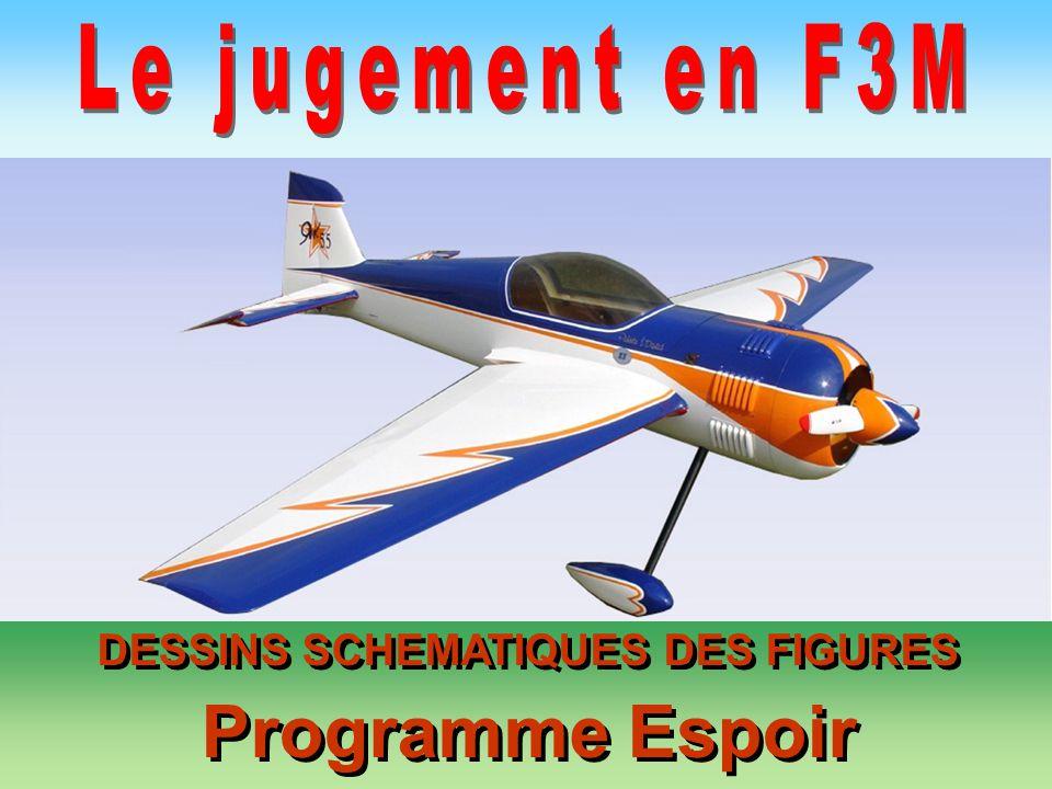 DESSINS SCHEMATIQUES DES FIGURES Programme Espoir DESSINS SCHEMATIQUES DES FIGURES Programme Espoir