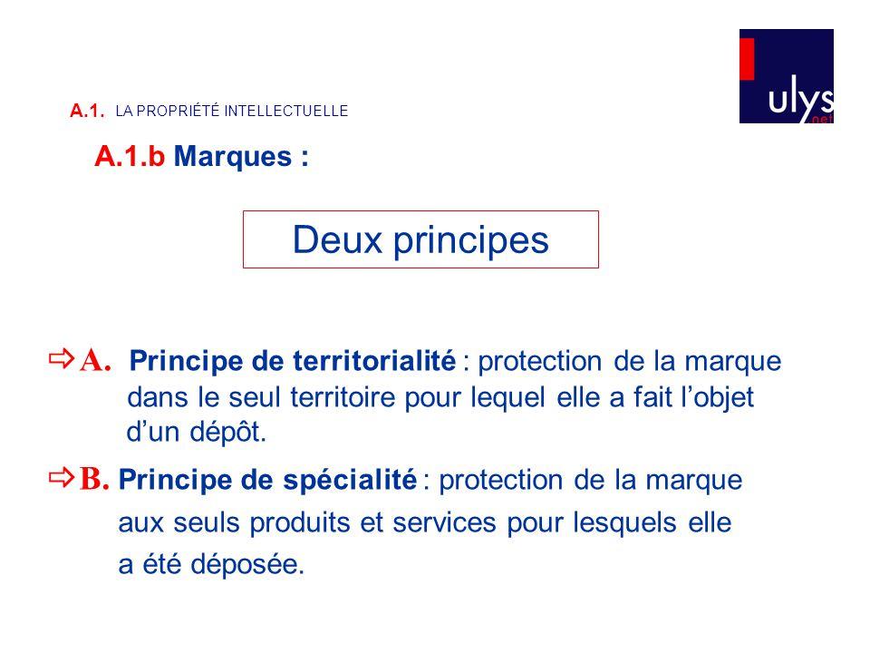  A. Principe de territorialité : protection de la marque dans le seul territoire pour lequel elle a fait l'objet d'un dépôt.  B. Principe de spécial