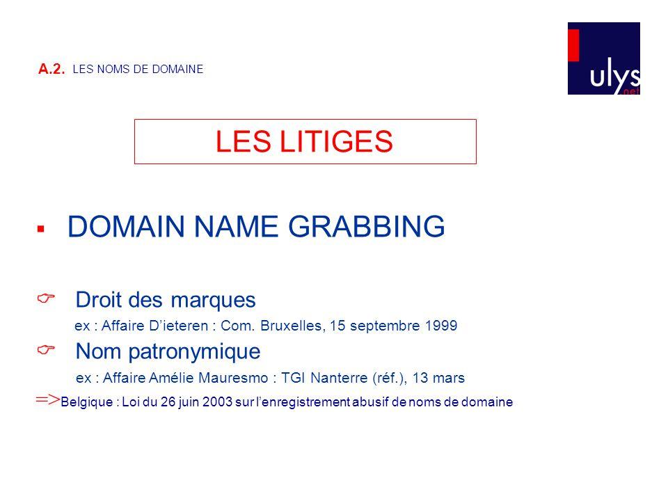  DOMAIN NAME GRABBING  Droit des marques ex : Affaire D'ieteren : Com. Bruxelles, 15 septembre 1999  Nom patronymique ex : Affaire Amélie Mauresmo