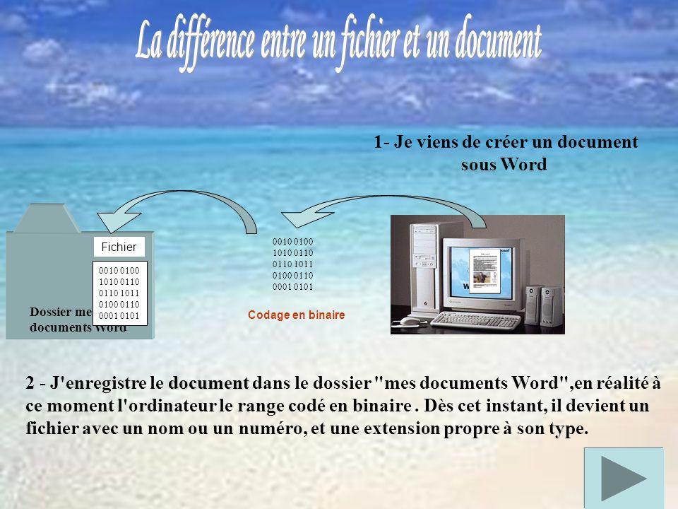 Dossier mes documents Word 1- Je viens de créer un document sous Word 2 - J enregistre le d dd document dans le dossier mes documents Word ,en réalité à ce moment l ordinateur le range codé en binaire.