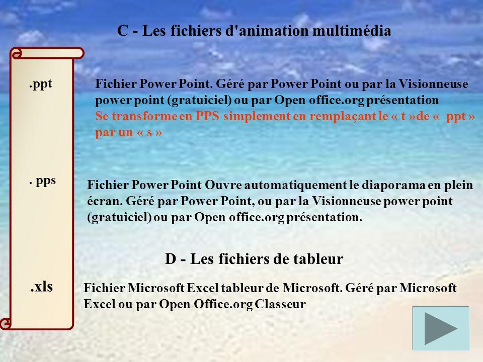 .ppt.pps C - Les fichiers d animation multimédia Fichier Power Point.