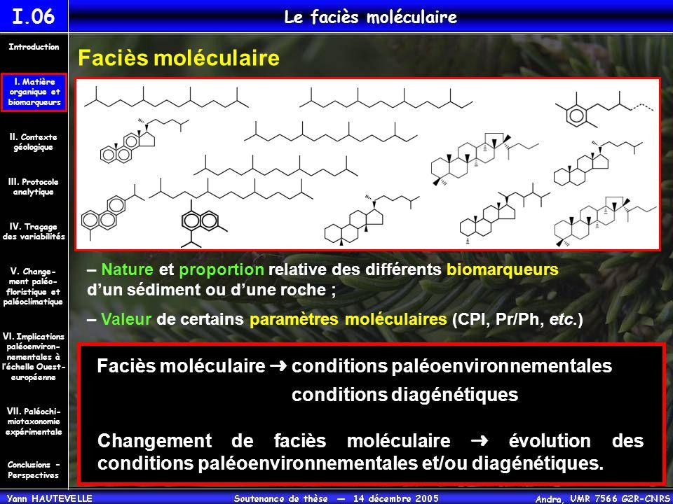 I.06 Le faciès moléculaire Faciès moléculaire – Nature et proportion relative des différents biomarqueurs d'un sédiment ou d'une roche ; – Valeur de c