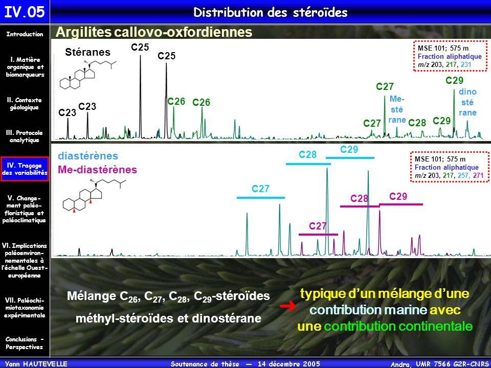 Distribution des stéroïdes IV.05 Conclusions – Perspectives II. Contexte géologique Introduction III. Protocole analytique IV. Traçage des variabilité