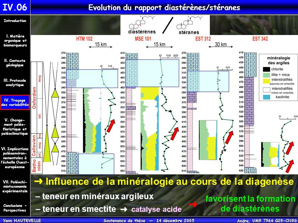 IV.06 Evolution du rapport diastérènes/stéranes Conclusions – Perspectives II. Contexte géologique Introduction III. Protocole analytique IV. Traçage