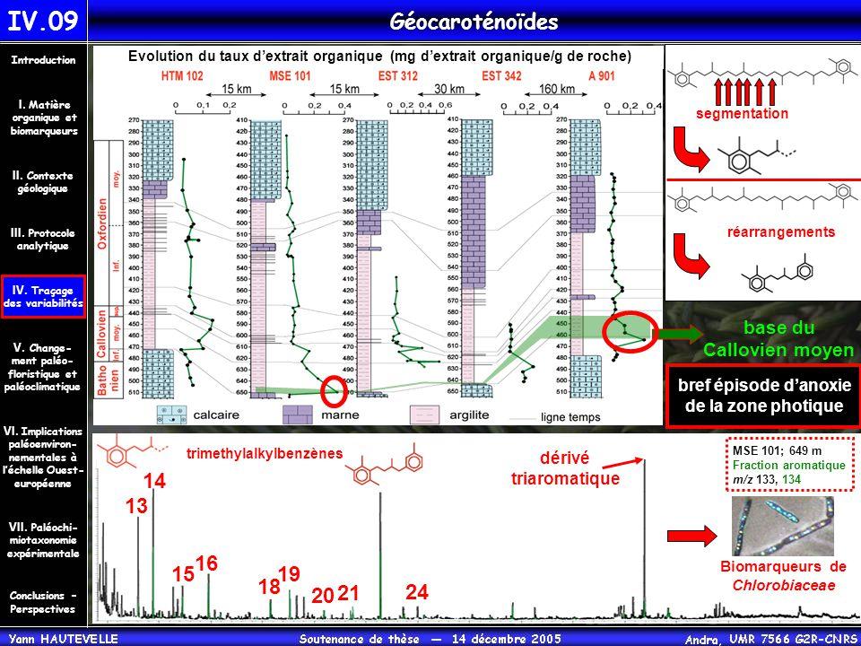 IV.09 Géocaroténoïdes Conclusions – Perspectives II. Contexte géologique Introduction III. Protocole analytique IV. Traçage des variabilités V. Change