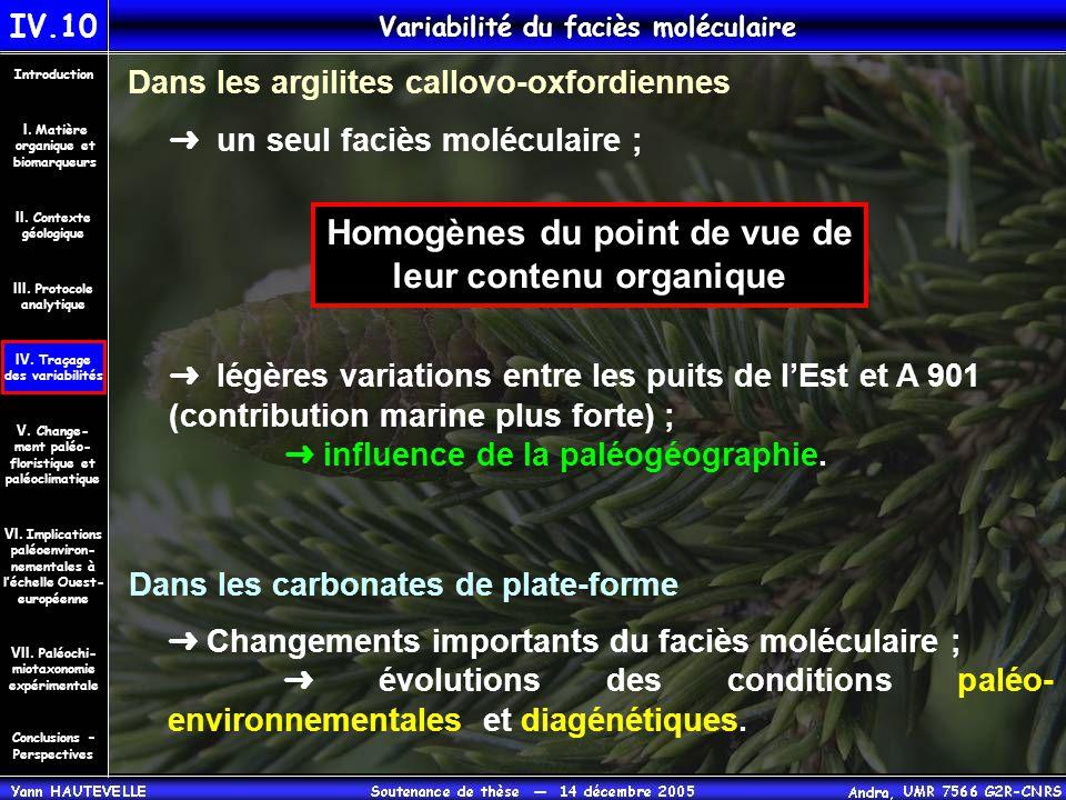 IV.10 Variabilité du faciès moléculaire Conclusions – Perspectives II. Contexte géologique Introduction III. Protocole analytique IV. Traçage des vari