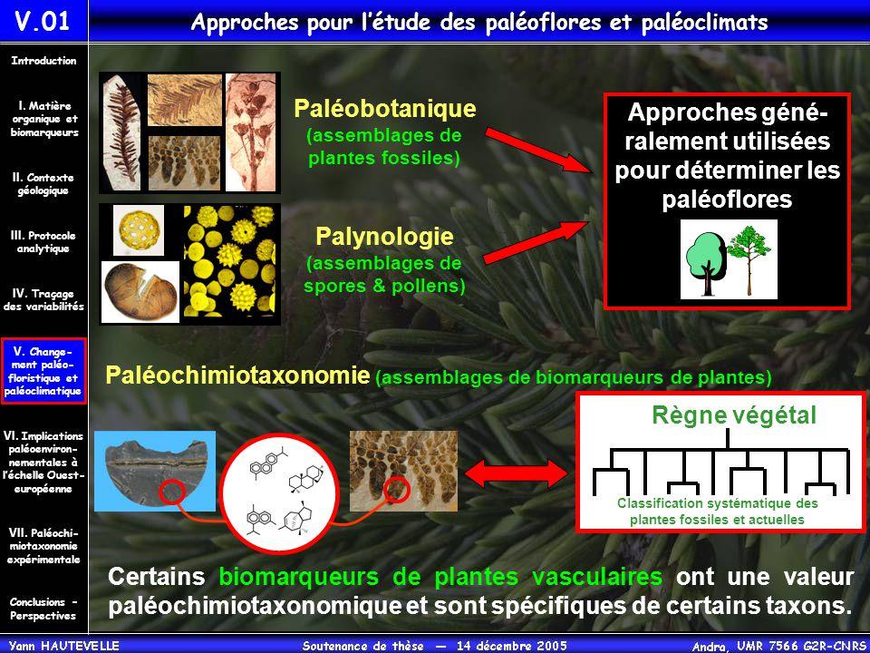 Paléobotanique (assemblages de plantes fossiles) Palynologie (assemblages de spores & pollens) Approches géné- ralement utilisées pour déterminer les