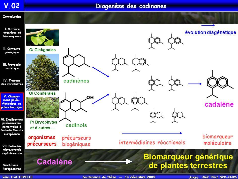 cadalène évolution diagénétique Cadalène Biomarqueur générique de plantes terrestres biomarqueur moléculaire précurseurs biogéniques O/ Ginkgoales O/
