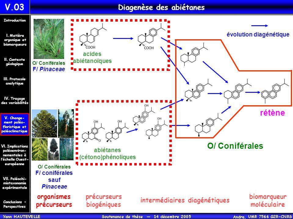 abiétanes (cétono)phénoliques acides abiétanoïques rétène O/ Coniférales F/ coniférales sauf Pinaceae V.03 Diagenèse des abiétanes évolution diagénéti