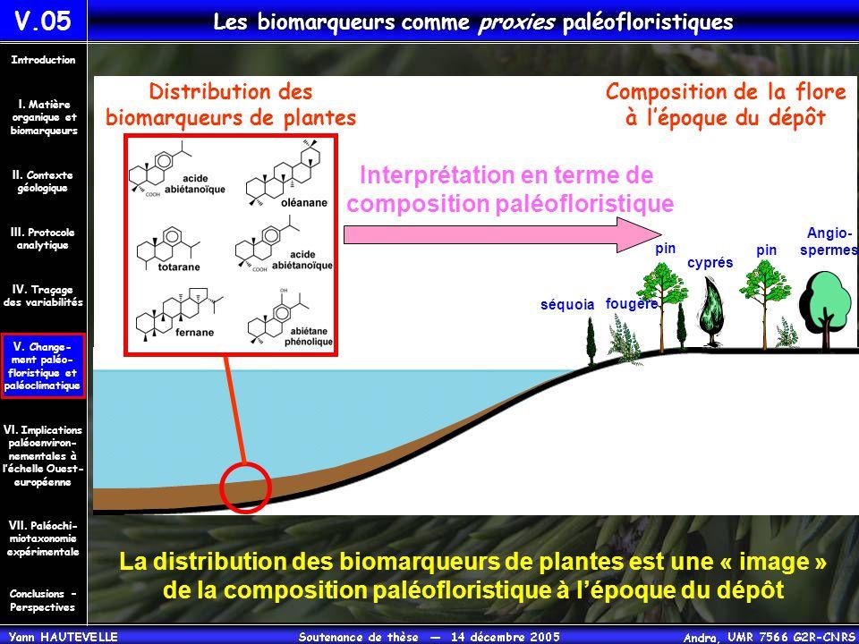 Composition de la flore à l'époque du dépôt cyprés Distribution des biomarqueurs de plantes fougère La distribution des biomarqueurs de plantes est un