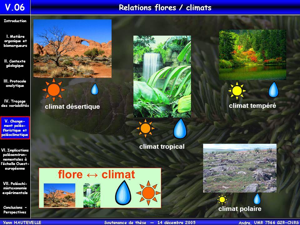 V.06 Relations flores / climats climat désertique climat tempéré climat tropical climat polaire flore ↔ climat Conclusions – Perspectives II. Contexte