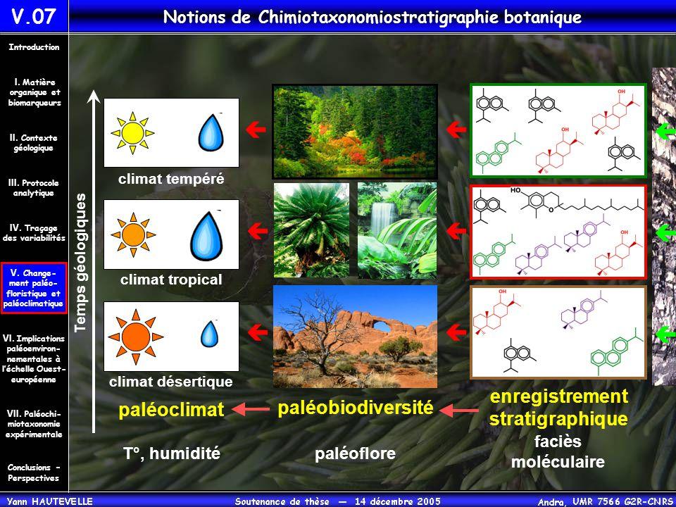 enregistrement stratigraphique paléobiodiversité paléoflore  paléoclimat T°, humidité  climat désertique  Temps géologiques  climat tropical  