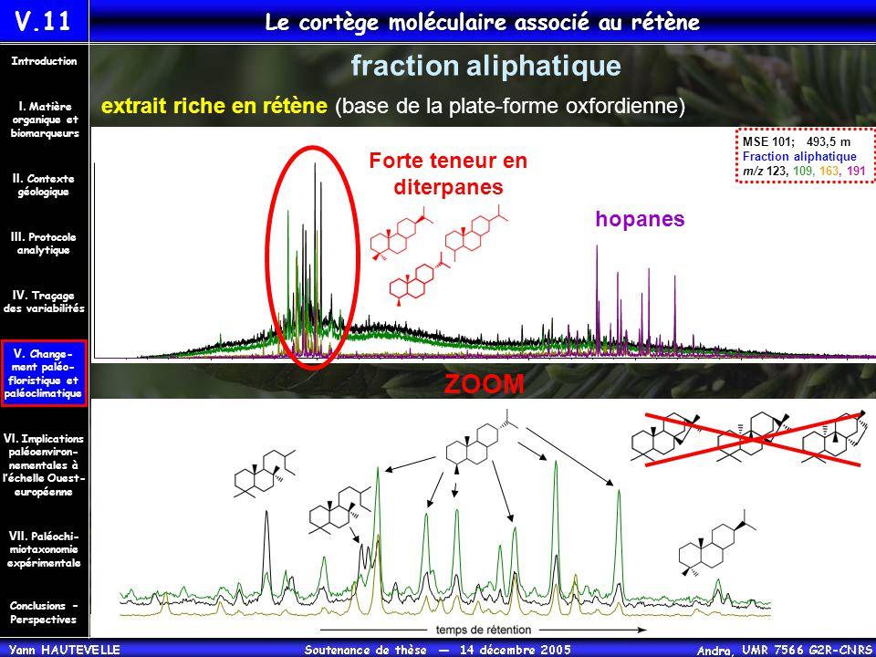 V.11 Le cortège moléculaire associé au rétène Conclusions – Perspectives II. Contexte géologique Introduction III. Protocole analytique IV. Traçage de