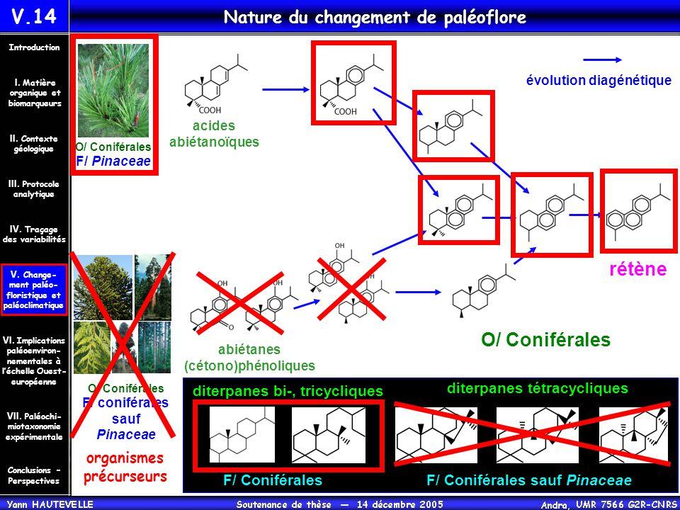 V.14 Nature du changement de paléoflore Conclusions – Perspectives II. Contexte géologique Introduction III. Protocole analytique IV. Traçage des vari