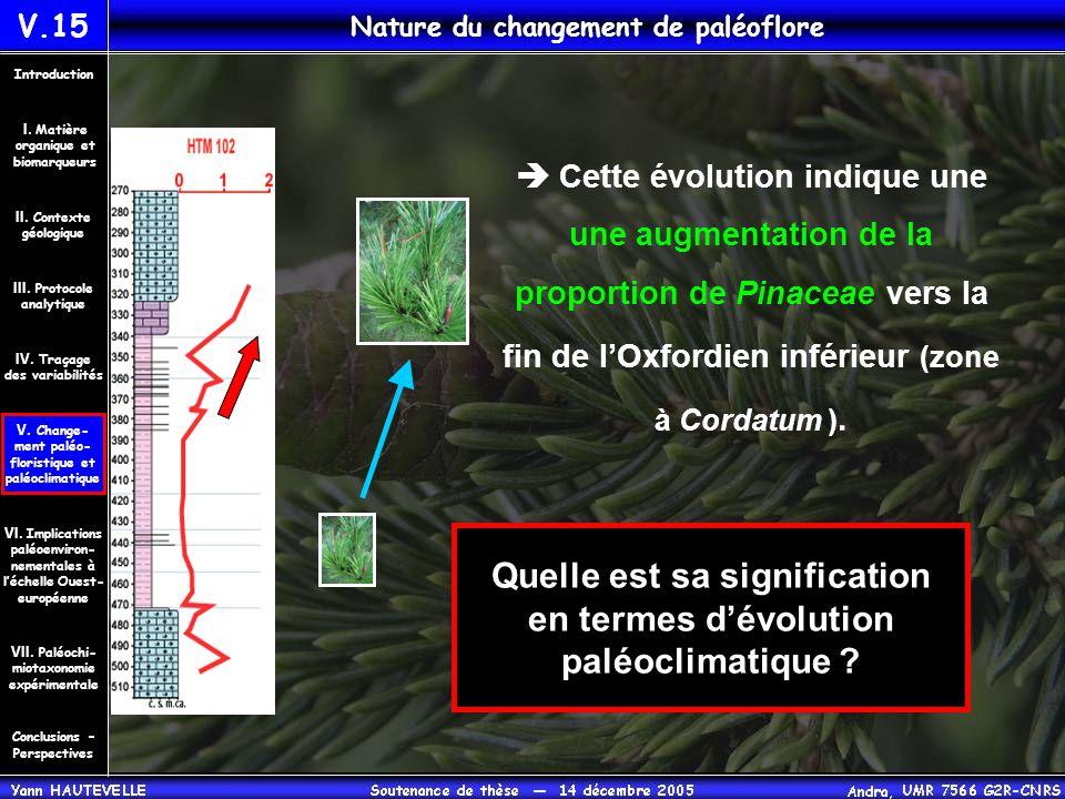 V.15 Nature du changement de paléoflore Quelle est sa signification en termes d'évolution paléoclimatique ?  Cette évolution indique une une augmenta