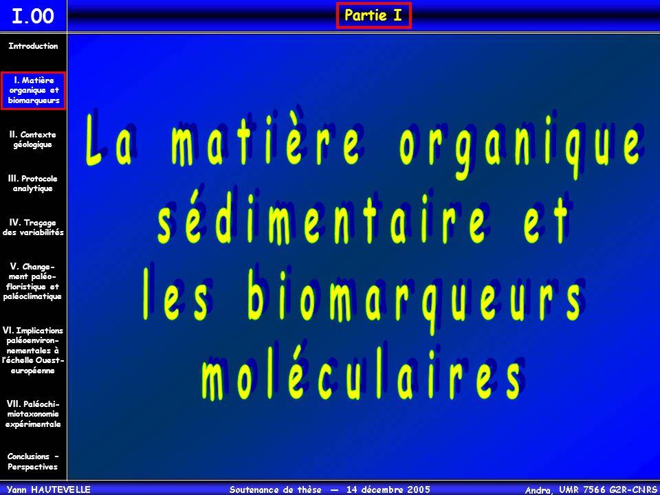 Composition moléculaire de la matière organique I.01 Matière Organique extractible Kérogène Conclusions – Perspectives II.