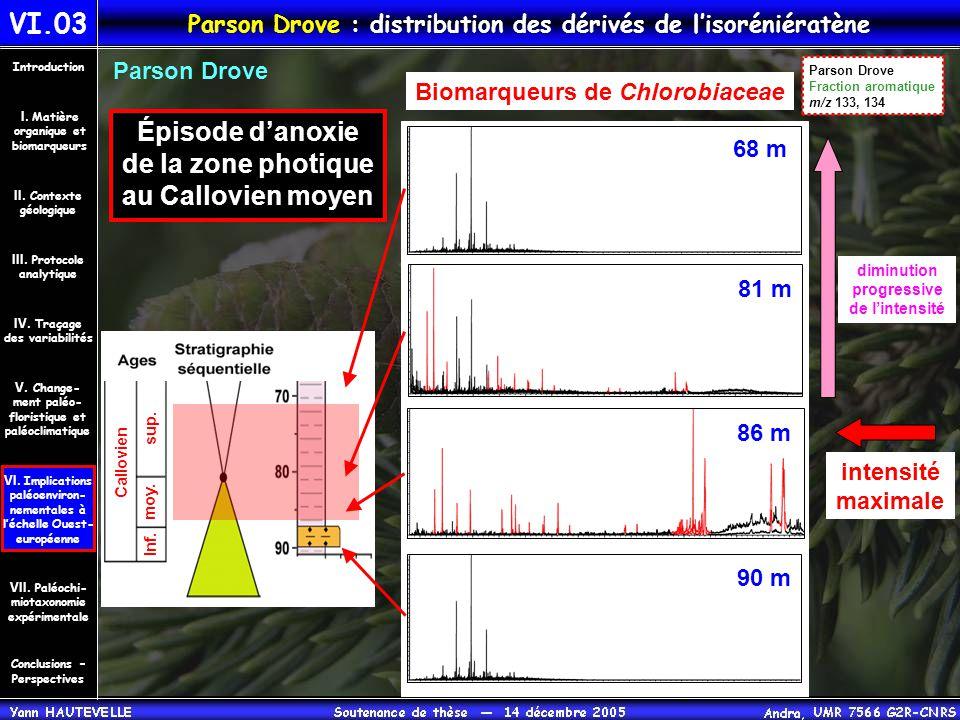 VI.03 Parson Drove : distribution des dérivés de l'isoréniératène Conclusions – Perspectives II. Contexte géologique Introduction III. Protocole analy