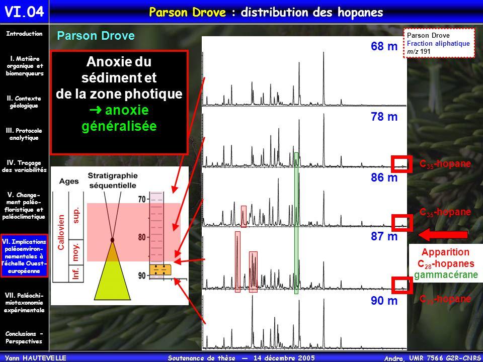 VI.04 Parson Drove : distribution des hopanes Conclusions – Perspectives II. Contexte géologique Introduction III. Protocole analytique IV. Traçage de