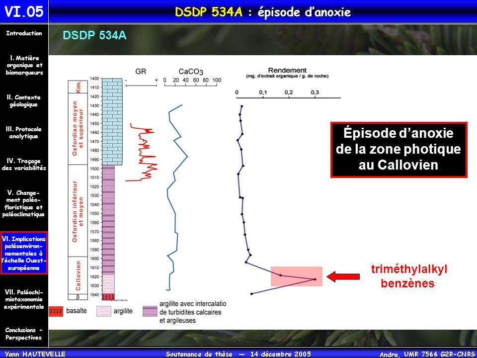 VI.05 DSDP 534A : épisode d'anoxie Conclusions – Perspectives II. Contexte géologique Introduction III. Protocole analytique IV. Traçage des variabili