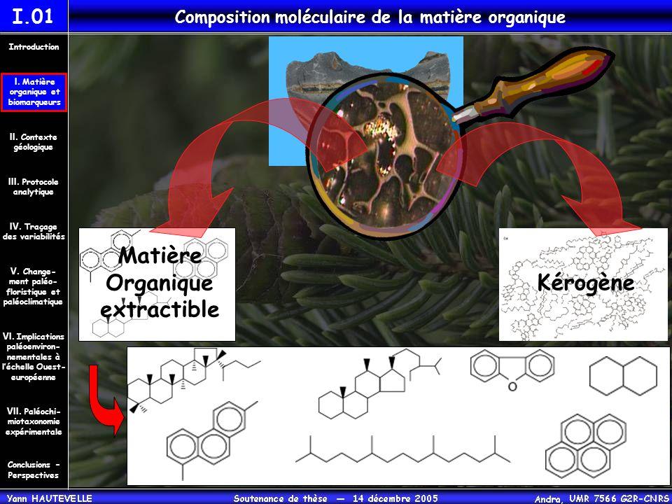 origine : bactérienne origine : dinoflagellés BIOMARQUEURS MOLECULAIRES I.02 Composition moléculaire de la matière organique Matière Organique extractible Kérogène dinostérane produits diagénétiques dinostérols biohopanoïdes hopanes Conclusions – Perspectives II.