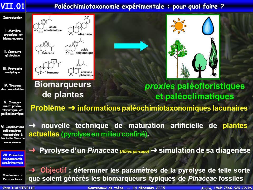 Paléochimiotaxonomie expérimentale : pour quoi faire ? VII.01 Conclusions – Perspectives II. Contexte géologique Introduction III. Protocole analytiqu