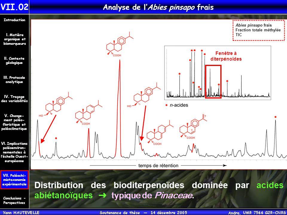 Analyse de l'Abies pinsapo frais Distribution des bioditerpenoïdes dominée par acides abiétanoïques ➜ typique de Pinaceae. Abies pinsapo frais Fractio