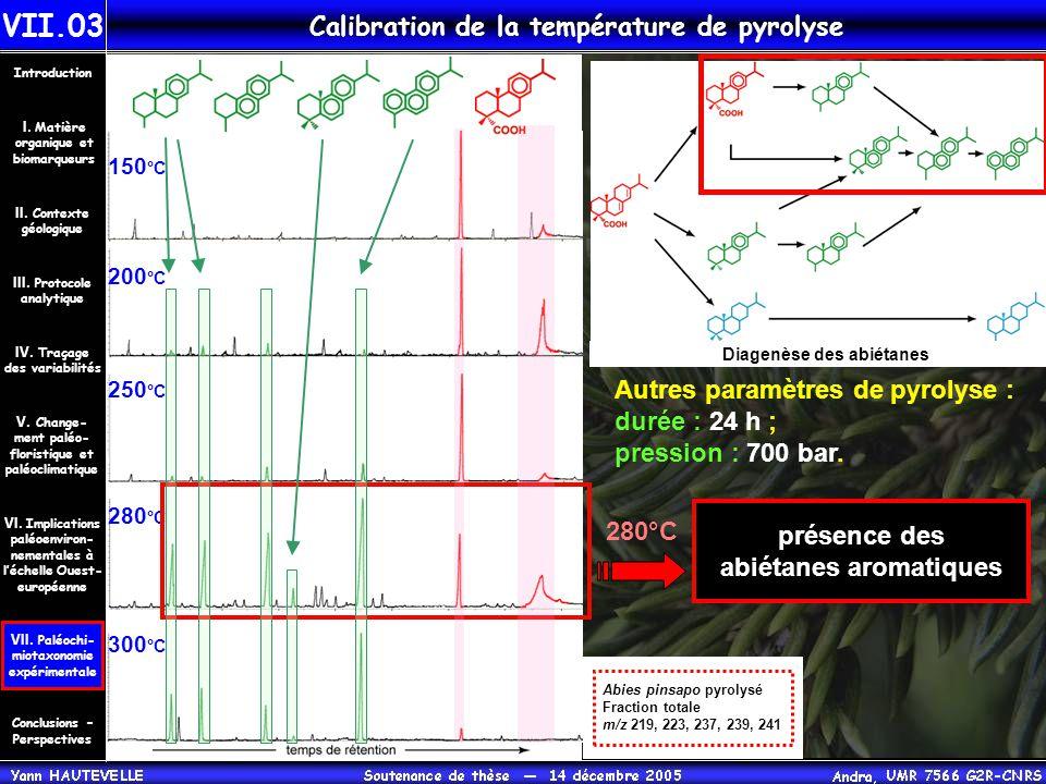 Calibration de la température de pyrolyse 150 °C 200 °C 250 °C 280 °C 300 °C Autres paramètres de pyrolyse : durée : 24 h ; pression : 700 bar. Diagen