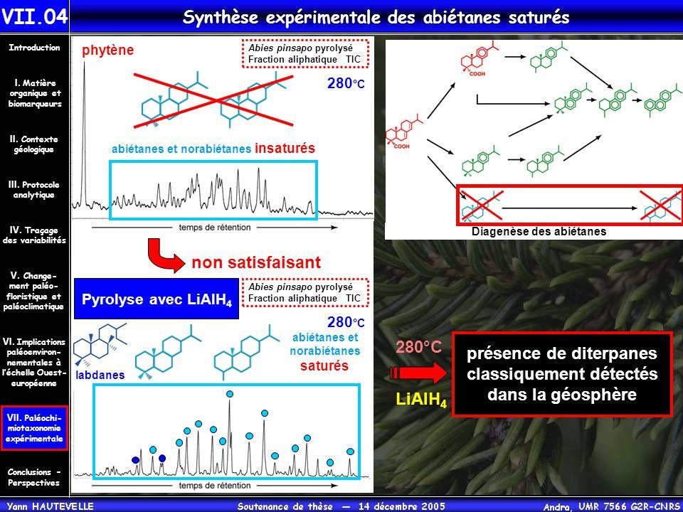 Synthèse expérimentale des abiétanes saturés Diagenèse des abiétanes phytène Abies pinsapo pyrolysé Fraction aliphatique TIC 280 °C présence de diterp