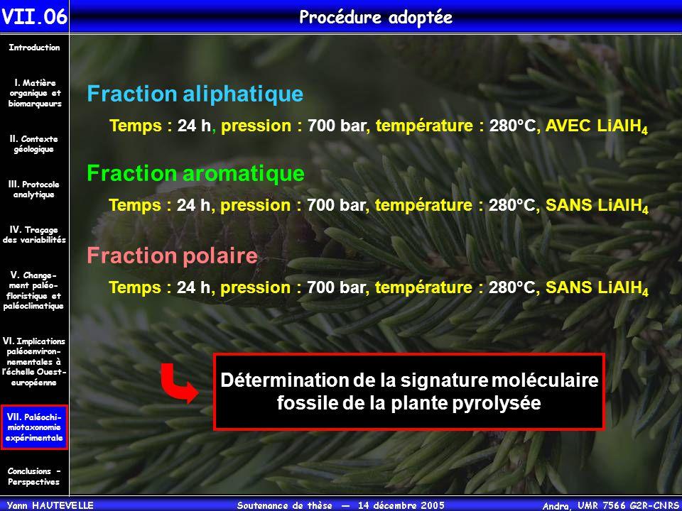 Procédure adoptée VII.06 Conclusions – Perspectives II. Contexte géologique Introduction III. Protocole analytique IV. Traçage des variabilités V. Cha