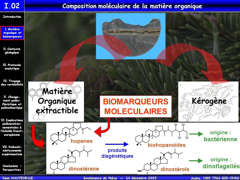 origine : bactérienne origine : dinoflagellés BIOMARQUEURS MOLECULAIRES I.02 Composition moléculaire de la matière organique Matière Organique extract