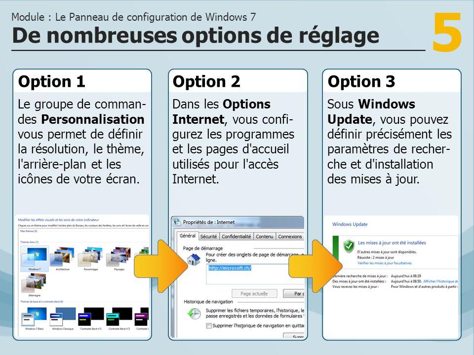 5 Option 1 Le groupe de comman- des Personnalisation vous permet de définir la résolution, le thème, l arrière-plan et les icônes de votre écran.