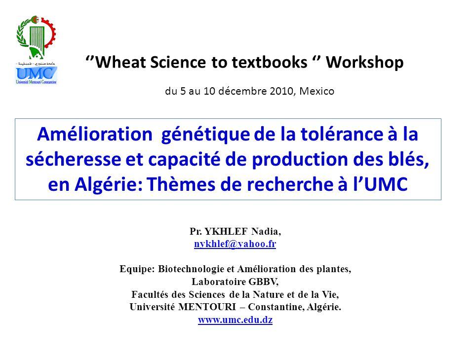 Amélioration génétique de la tolérance à la sécheresse et capacité de production des blés, en Algérie: Thèmes de recherche à l'UMC ''Wheat Science to textbooks '' Workshop Pr.
