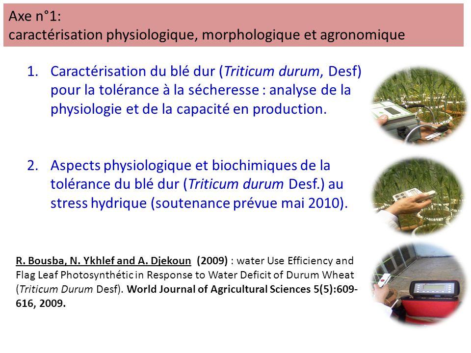 1.Caractérisation du blé dur (Triticum durum, Desf) pour la tolérance à la sécheresse : analyse de la physiologie et de la capacité en production.