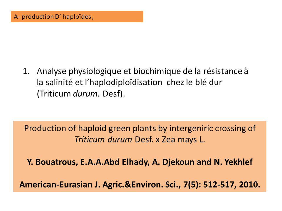 A- production D' haploïdes, 1.Analyse physiologique et biochimique de la résistance à la salinité et l'haplodiploïdisation chez le blé dur (Triticum durum.