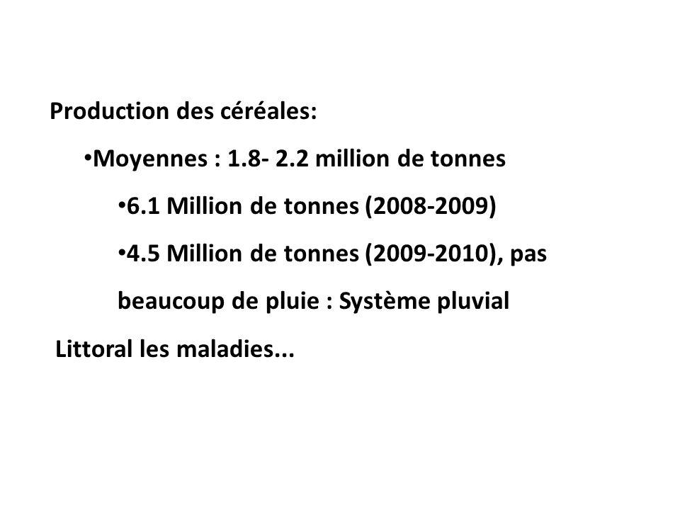 Production des céréales: Moyennes : 1.8- 2.2 million de tonnes 6.1 Million de tonnes (2008-2009) 4.5 Million de tonnes (2009-2010), pas beaucoup de pluie : Système pluvial Littoral les maladies...