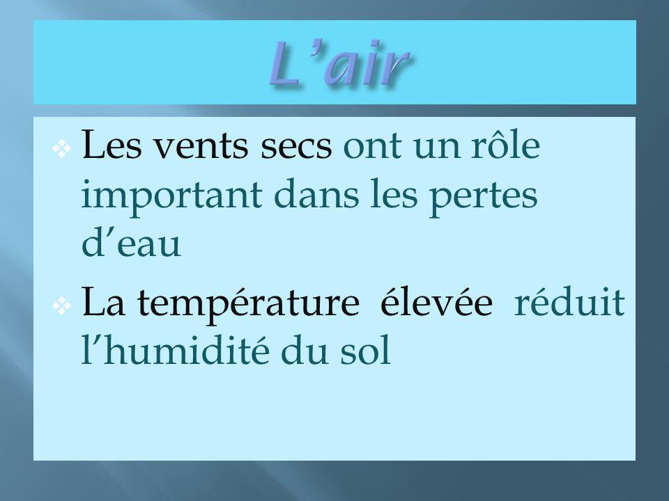  Les vents secs ont un rôle important dans les pertes d'eau  La température élevée réduit l'humidité du sol