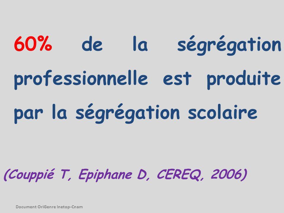60% de la ségrégation professionnelle est produite par la ségrégation scolaire (Couppié T, Epiphane D, CEREQ, 2006) Document OriGenre Inetop-Cnam