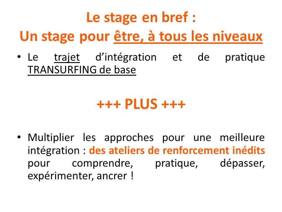 Le stage en bref : Un stage pour être, à tous les niveaux Le trajet d'intégration et de pratique TRANSURFING de base +++ PLUS +++ Multiplier les appro