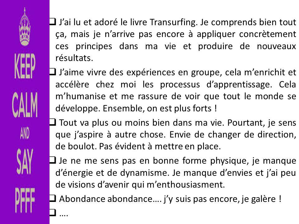  J'ai lu et adoré le livre Transurfing. Je comprends bien tout ça, mais je n'arrive pas encore à appliquer concrètement ces principes dans ma vie et