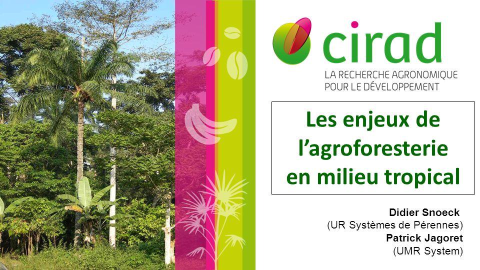 Les enjeux de l'agroforesterie en milieu tropical Didier Snoeck (UR Systèmes de Pérennes) Patrick Jagoret (UMR System)