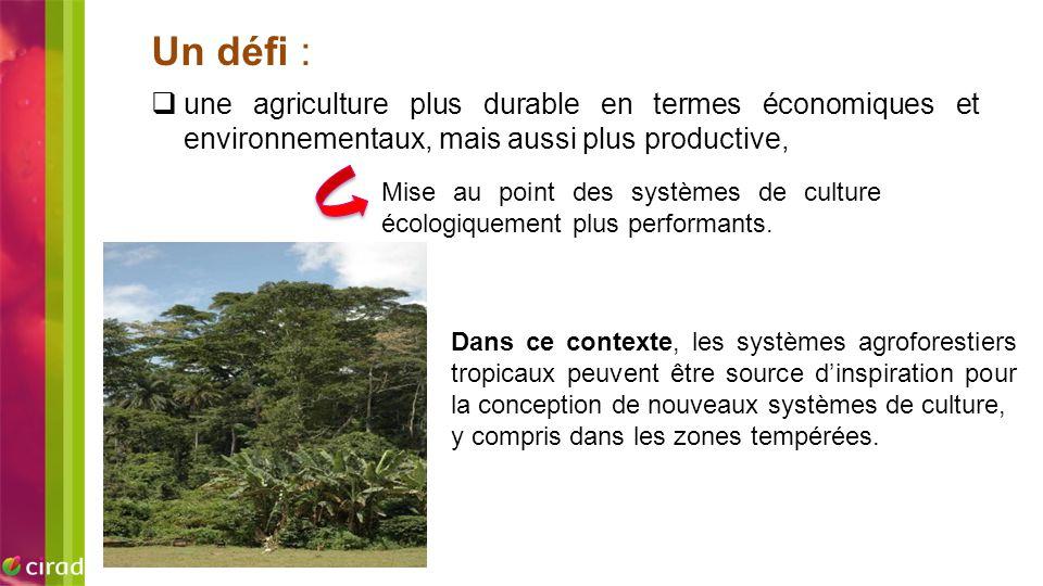 Dans ce contexte, les systèmes agroforestiers tropicaux peuvent être source d'inspiration pour la conception de nouveaux systèmes de culture, y compri