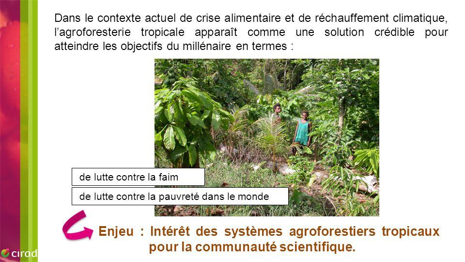 EXEMPLE D'IMAGE Dans le contexte actuel de crise alimentaire et de réchauffement climatique, l'agroforesterie tropicale apparaît comme une solution cr