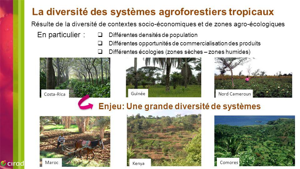 La diversité des systèmes agroforestiers tropicaux Résulte de la diversité de contextes socio-économiques et de zones agro-écologiques  Différentes d