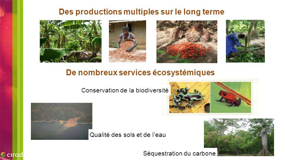 EXEMPLE D'IMAGE Des productions multiples sur le long terme Conservation de la biodiversité Séquestration du carbone Qualité des sols et de l'eau De n