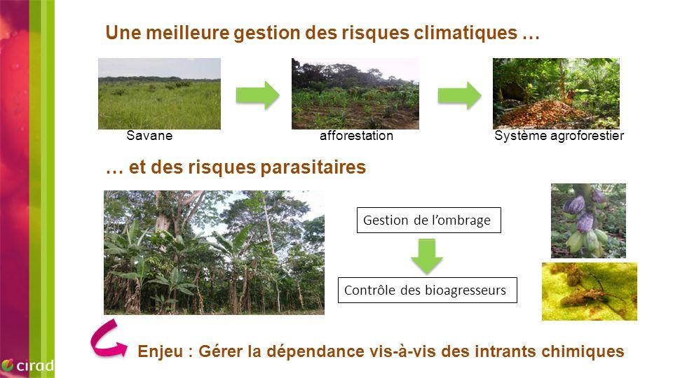 EXEMPLE D'IMAGE Une meilleure gestion des risques climatiques … Enjeu : Gérer la dépendance vis-à-vis des intrants chimiques Gestion de l'ombrage Cont