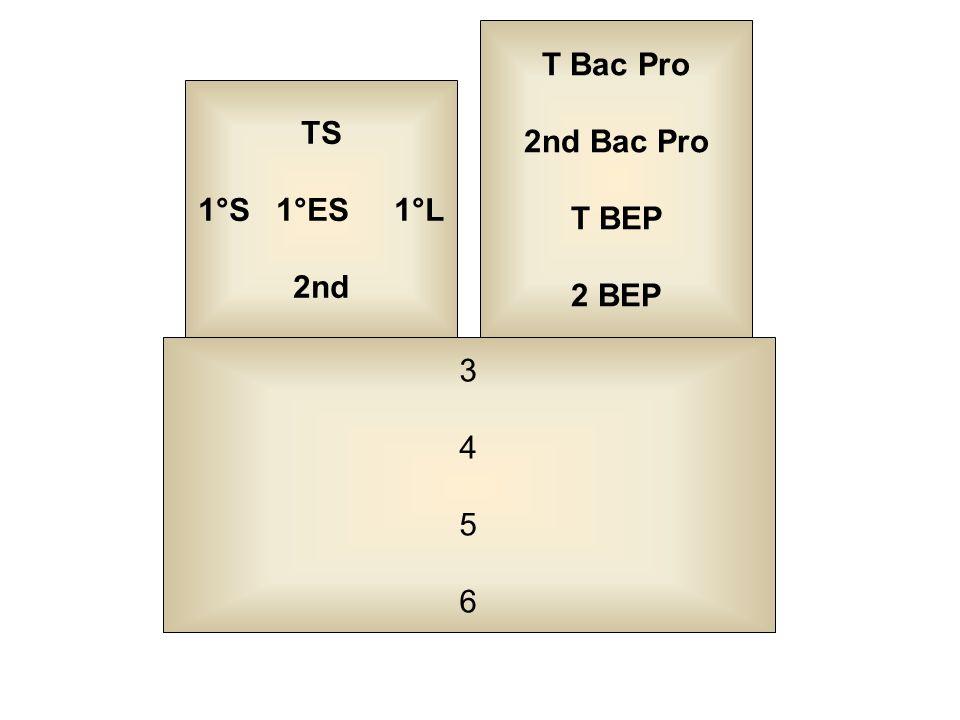 34563456 TS 1°S 1°ES 1°L 2nd T Bac Pro 2nd Bac Pro T BEP 2 BEP