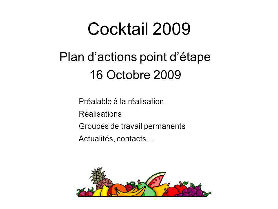 Cocktail 2009 Plan d'actions point d'étape 16 Octobre 2009 Préalable à la réalisation Réalisations Groupes de travail permanents Actualités, contacts.